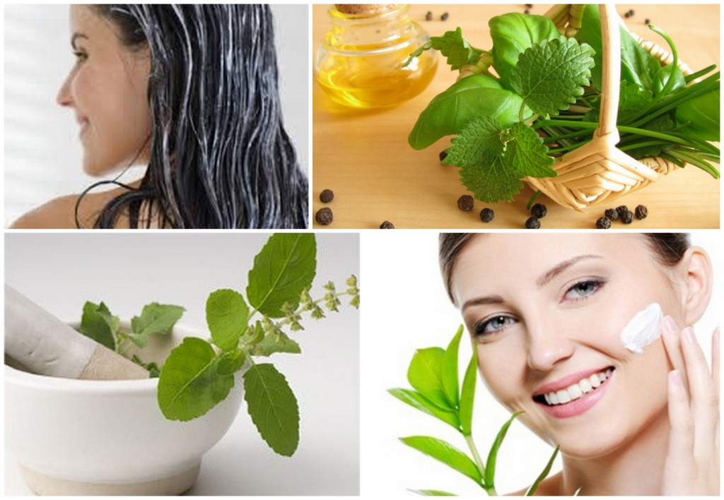 Benefits of Using Basil for Skin and Hair