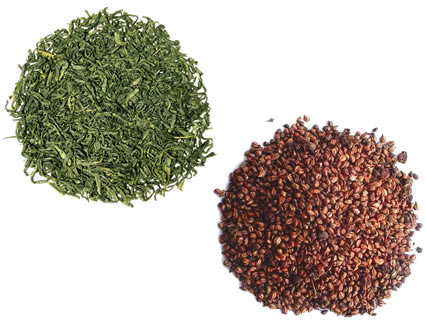 Green Tea and Grape Seed Extract