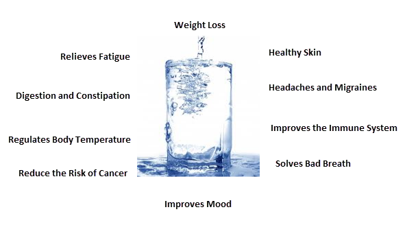 Why Is Drinking Water Important For Losing Weight