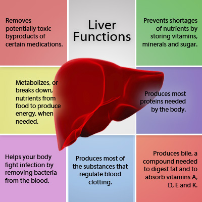 9 best natural diet foods good for liver cleansing functions of the liver ccuart Choice Image