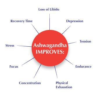 Use Of Ashwagandha