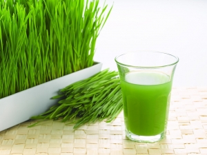 wheatgrass to Increase Blood Platelet Level Naturally