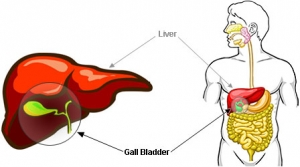 gallbladder pain.