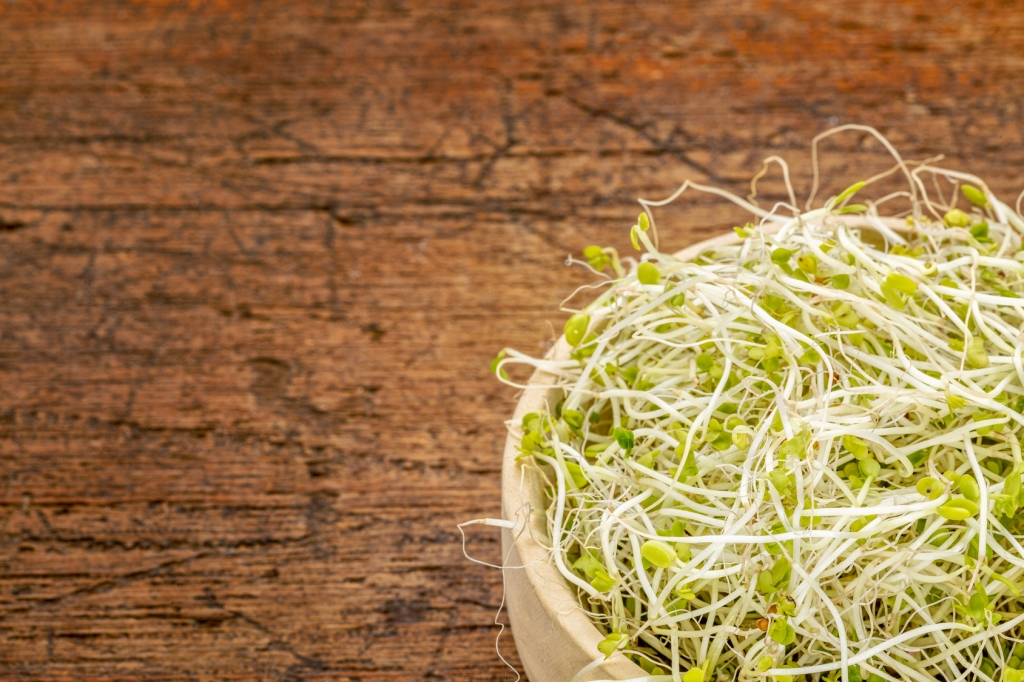10 Reasons to Eat Sprouts