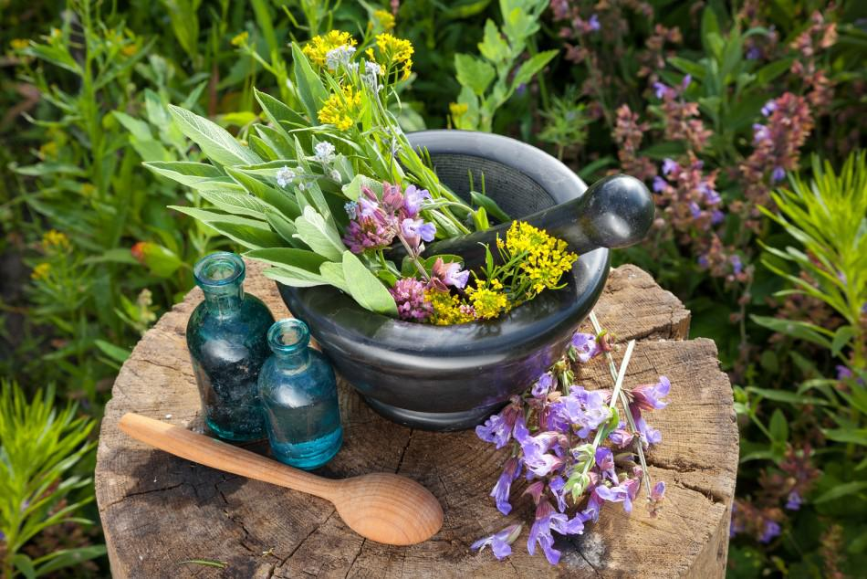 10 Best Healing Herbs You Can Use Daily - InlifeHealthCare