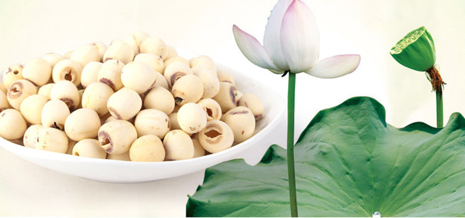10 Amazing Nutritional Benefits And Healing Properties Of Lotus