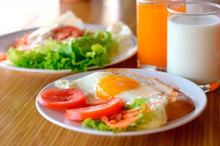 high protein low carb diet