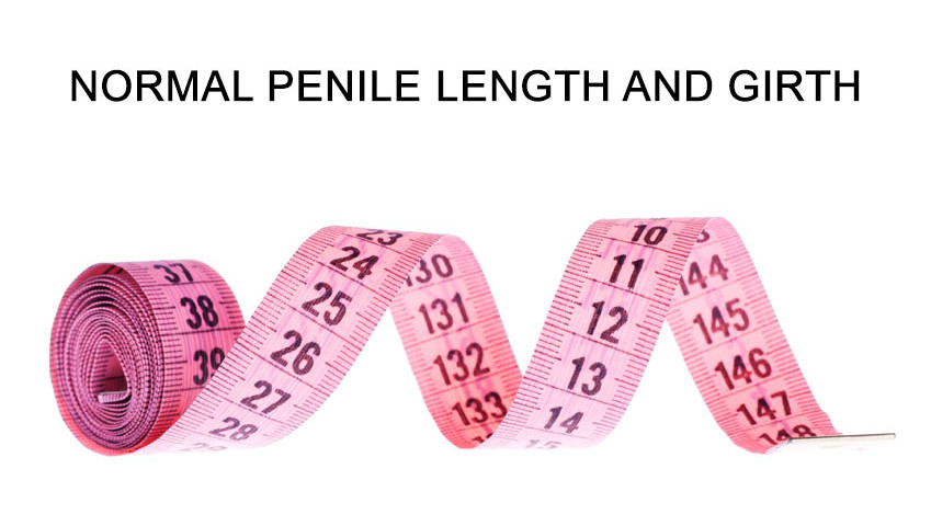 Normal-Penile-Length-and-Girth-849x480