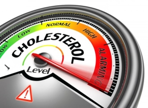 cholesterol - cause of heart attack