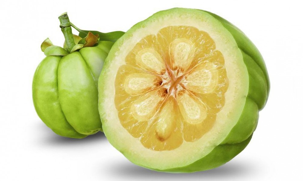 Garcinia Cambogia Myth Or Magic Here Are The Amazing Benefits For You
