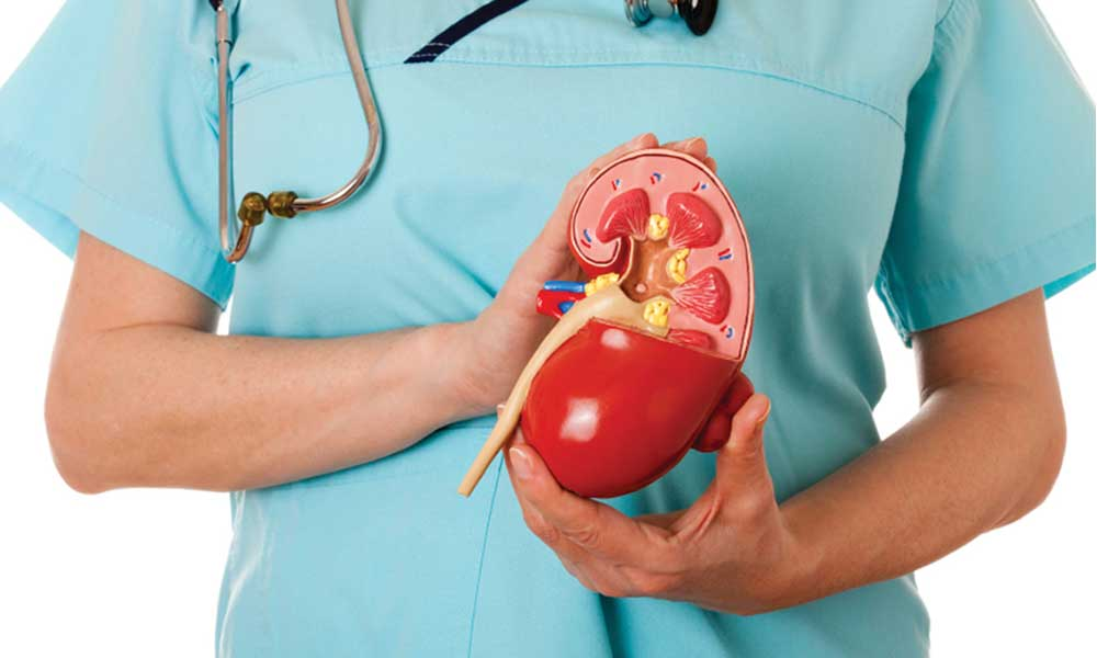 Some Symptoms To Detect Early Stage Of CKD (Chronic Kidney Disease)