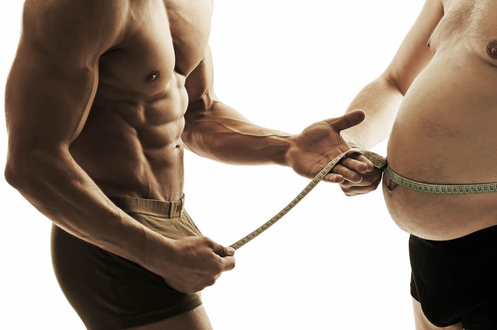 Build Muscle, Lose fat