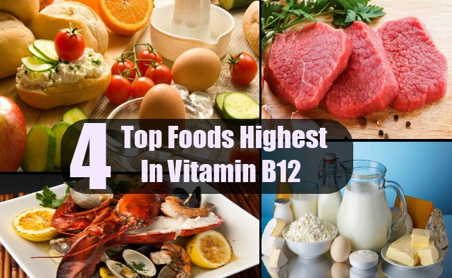 Discover the knot between birth defects and maternal diet foods that are rich in b 12 workwithnaturefo