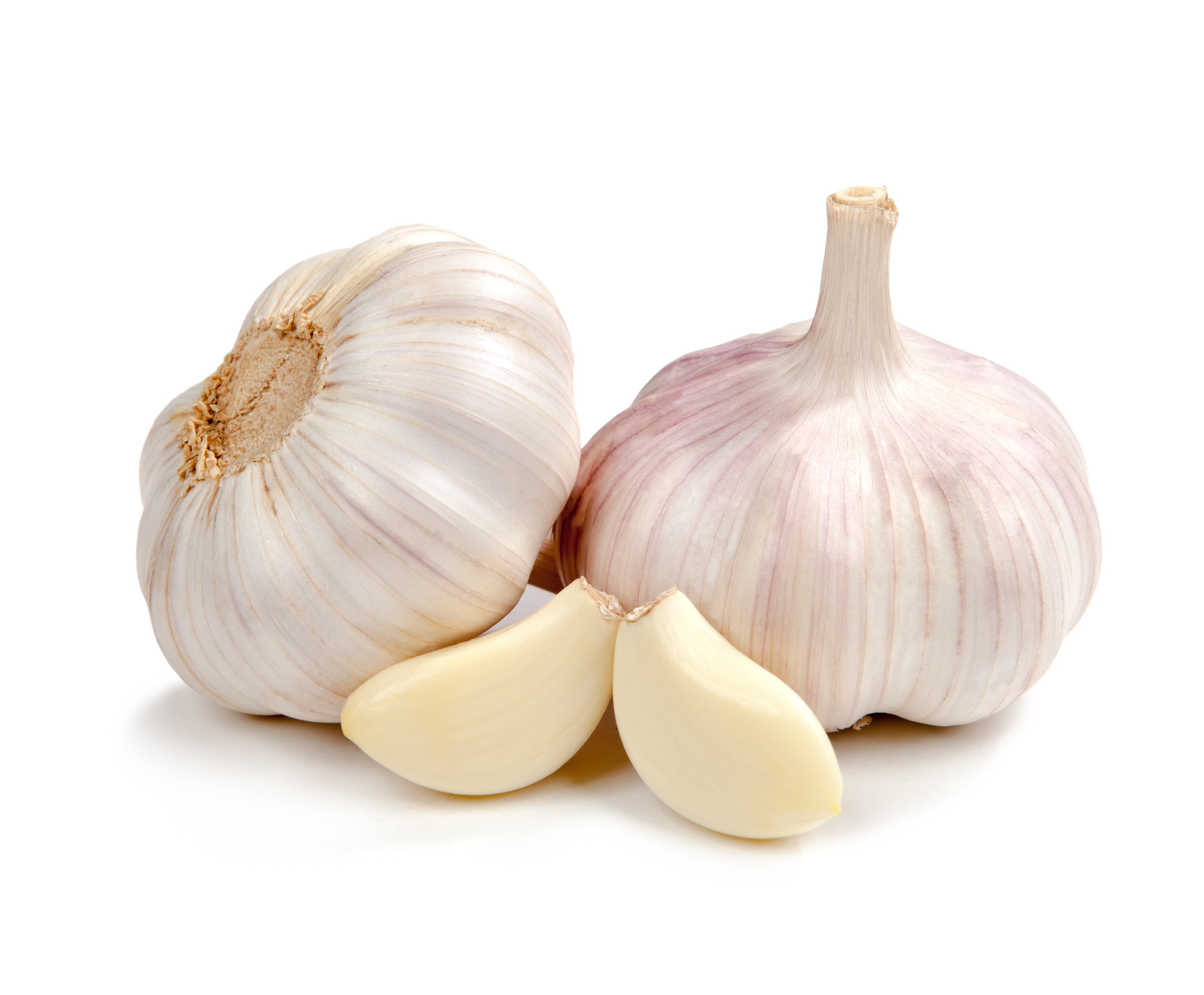 garlic for TB