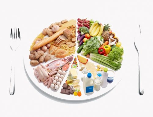 Recommended Servings from Each Food Group For Your Daily Diet