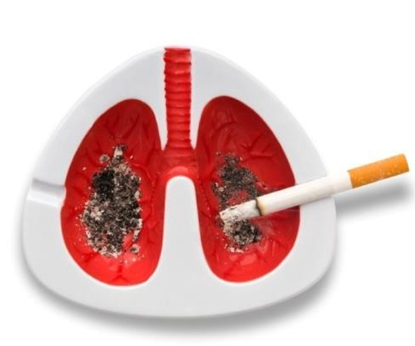 how cigarette smoking can effect health Smoking and its effects - info for some of these chemicals affect the brain nowadays everyone knows that smoking is bad for health so look after your body.