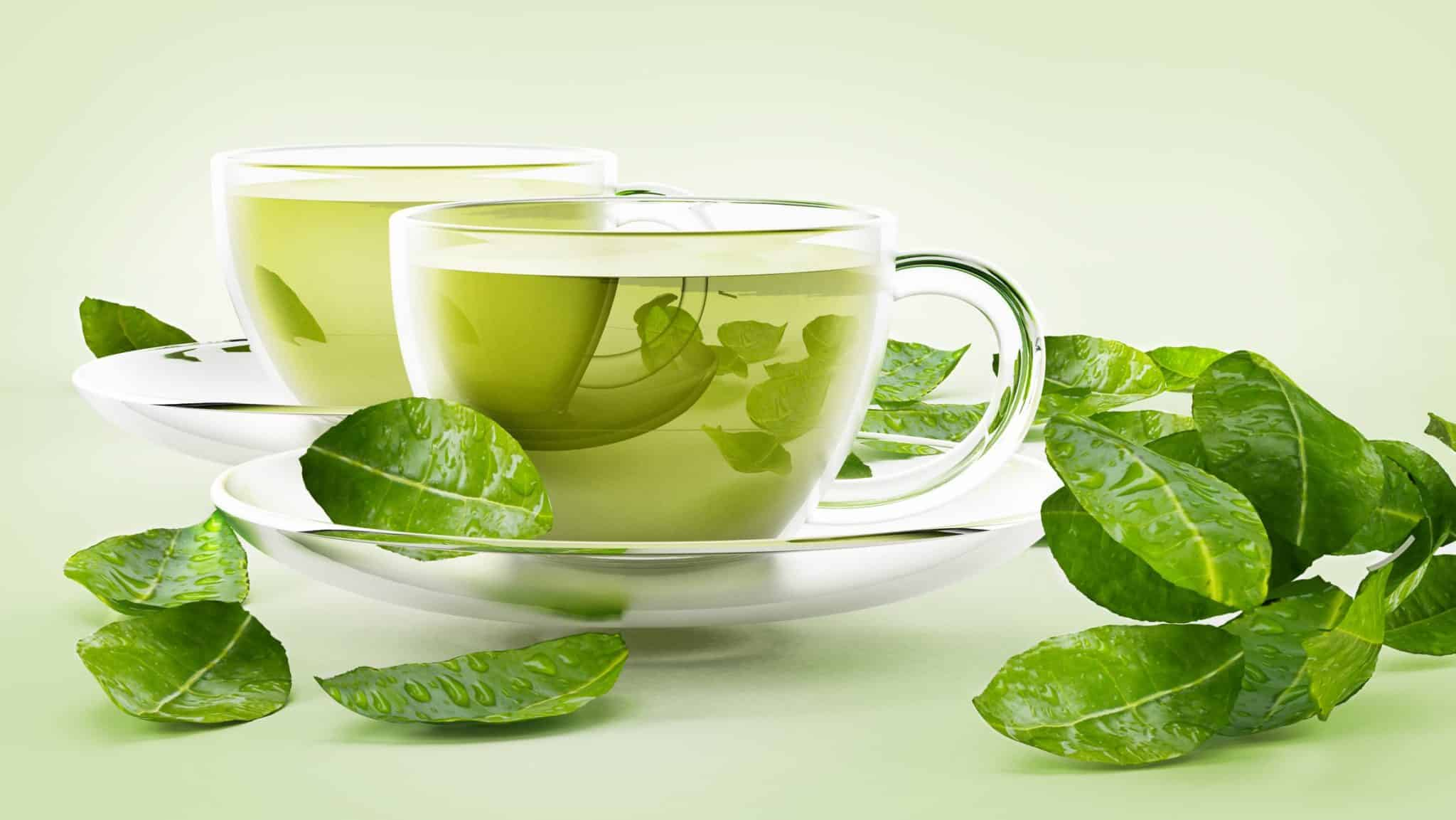 19 proven health benefits of green tea you need to know