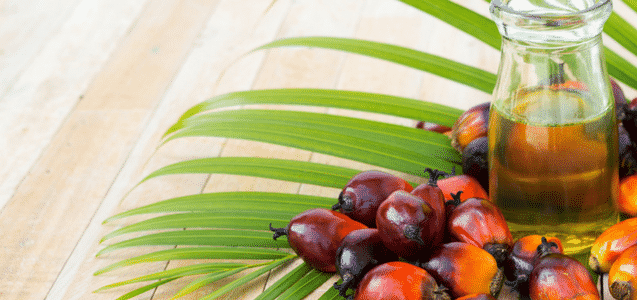 Palm Oil Richness Which Gives Number Of Health Benefits