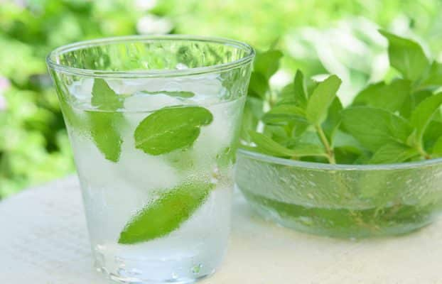 Refreshing Mint Infused Water