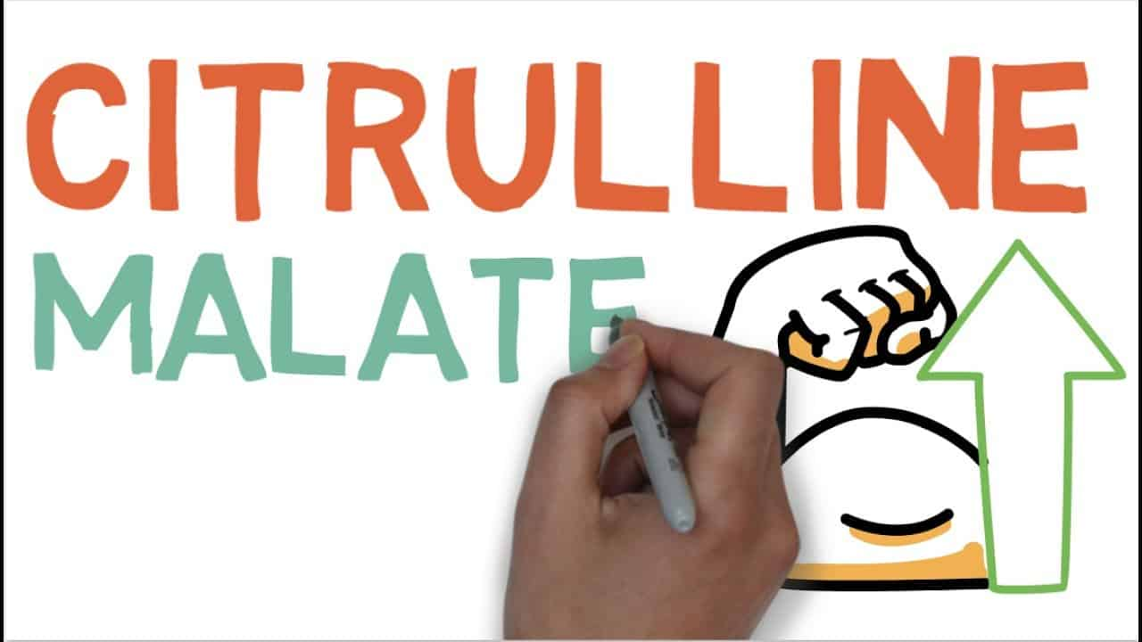 Citrulline Malate Role and Benefits