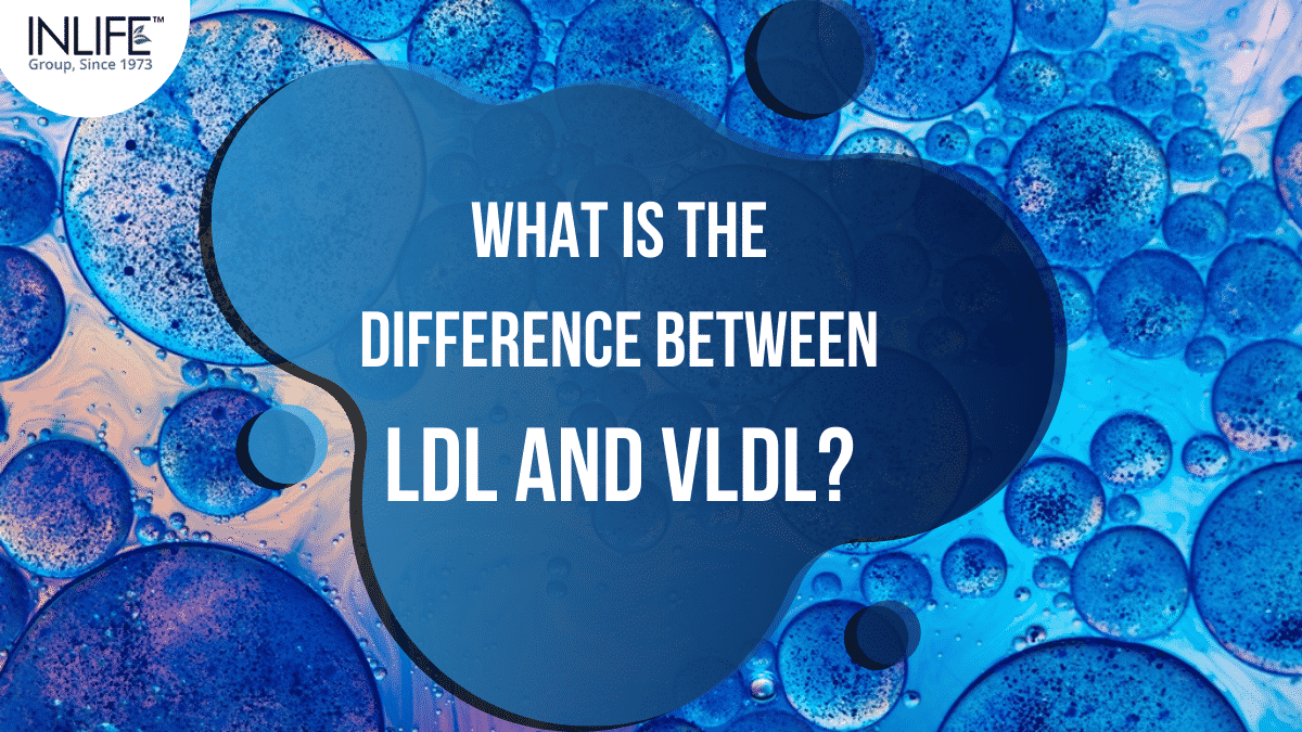 What Is The Difference Between LDL And VLDL?